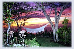 Sunset View with hammock at our Montserrat Villa